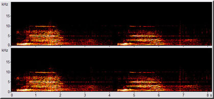 spectrogram of Luna's rising call
